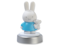 33228miffynightlightblue(website)